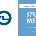 Słowackie łożyska kulkowe ZVL